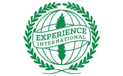 Experience International