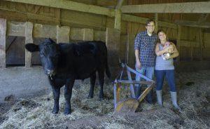 McIntyre Family Farm