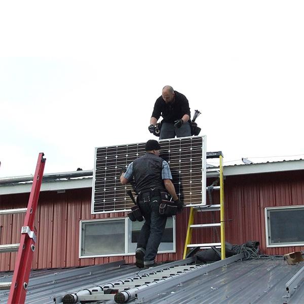 Dandelion-Organic-Solar-Installation