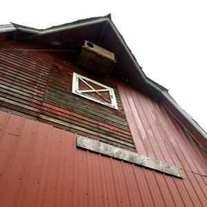 The Barn at Haucks Orchard
