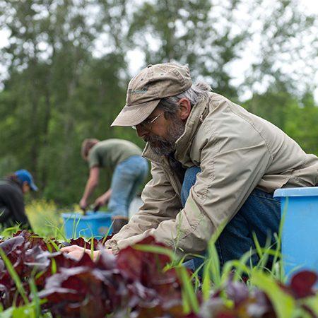 Mike Cedarville Farm