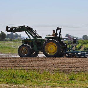 Viva-farms-tractor