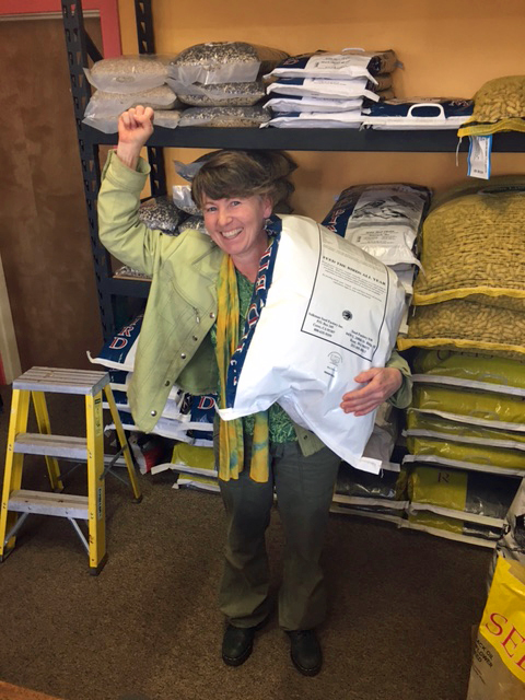 8 Questions with A Local Business Owner: Valerie Wade of the Wild Bird Chalet
