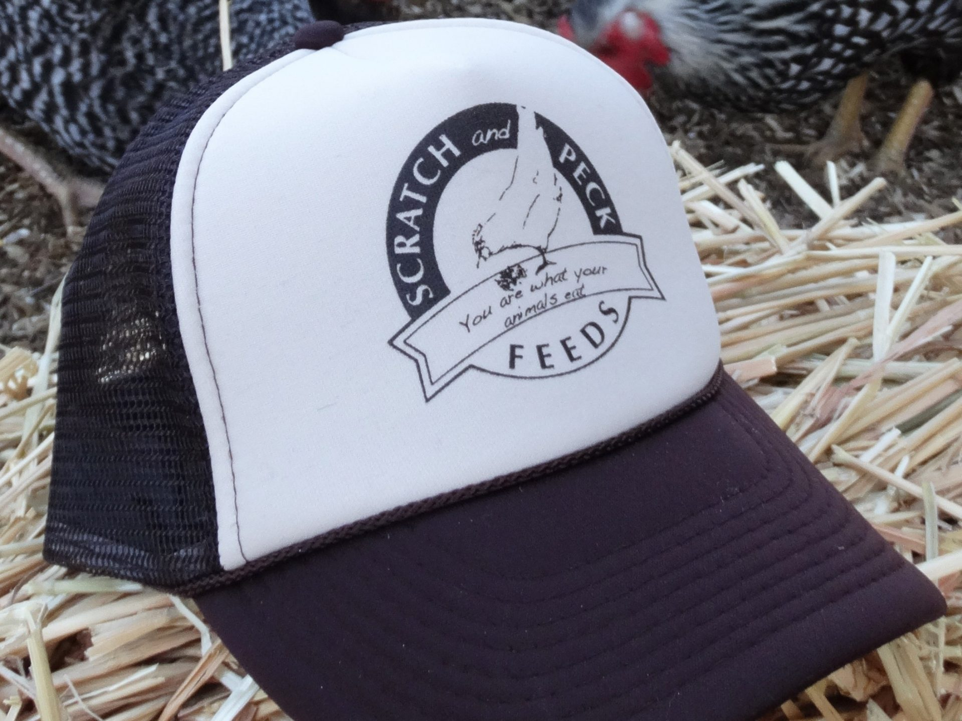 A black and white trucker hat with the Scratch and Peck Feeds logo on a bed of hay with hens in the background.